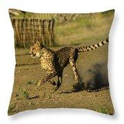Cheetah On The Run Throw Pillow