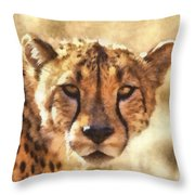 Cheetah One Throw Pillow