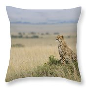 Cheetah Perched On A Mound Throw Pillow