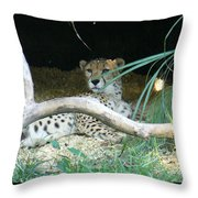Cheetah Resting  Throw Pillow