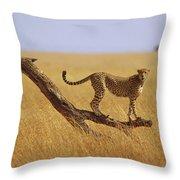 Cheetah Standing On Dead Tree Throw Pillow