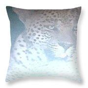 Cheetah Visits The Camp At Night Throw Pillow