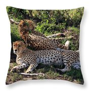 Cheetahs Of The Masai Mara Throw Pillow