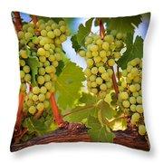 Chelan Grapevines Throw Pillow