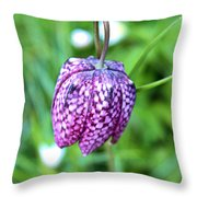 Chequered Throw Pillow