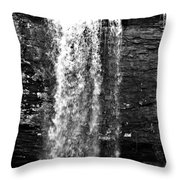 Cherokee Falls In Monochrome Throw Pillow