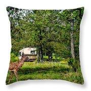 Cherokee Lake Thousand Trails Preserve Throw Pillow