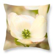 Cherokee Princess Dogwood Blossom In Beige Throw Pillow