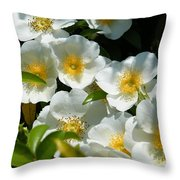 Cherokee Rose 2011 Throw Pillow