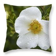 Cherokee Rose With Rain Drops Throw Pillow
