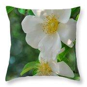 Cherokee Roses Throw Pillow