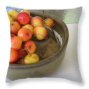 Cherries And Glass Filler Throw Pillow