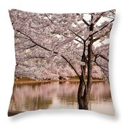 Cherry Basin Throw Pillow