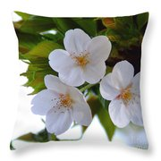Cherry Blossom 2 Throw Pillow