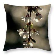 Cherry Blossom Bokeh Throw Pillow
