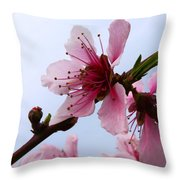 Cherry Blossom Throw Pillow by Camille Lopez