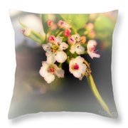 Cherry Blossom Flowers Throw Pillow