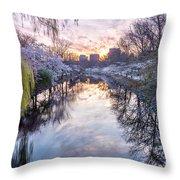 Cherry Blossom Lagoon Throw Pillow