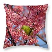 Cherry Blossom Time Throw Pillow