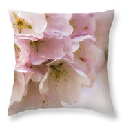 Cherry Blossom Time Throw Pillow