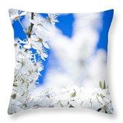 Cherry Blossom With Blue Sky Throw Pillow