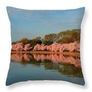 Cherry Blossoms 2013 - 001 Throw Pillow