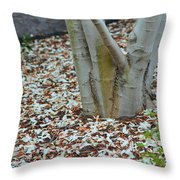 Cherry Blossoms 2013 - 002 Throw Pillow