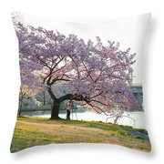 Cherry Blossoms 2013 - 003 Throw Pillow
