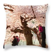 Cherry Blossoms 2013 - 006 Throw Pillow