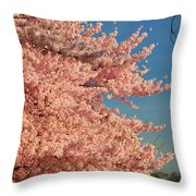 Cherry Blossoms 2013 - 013 Throw Pillow