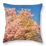 Cherry Blossoms 2013 - 016 Throw Pillow