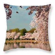 Cherry Blossoms 2013 - 023 Throw Pillow