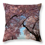 Cherry Blossoms 2013 - 024 Throw Pillow