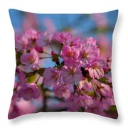 Cherry Blossoms 2013 - 031 Throw Pillow