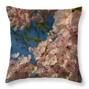 Cherry Blossoms 2013 - 035 Throw Pillow
