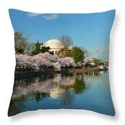 Cherry Blossoms 2013 - 041 Throw Pillow