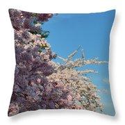 Cherry Blossoms 2013 - 046 Throw Pillow