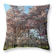 Cherry Blossoms 2013 - 049 Throw Pillow