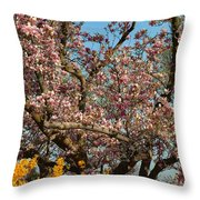 Cherry Blossoms 2013 - 051 Throw Pillow