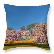 Cherry Blossoms 2013 - 052 Throw Pillow