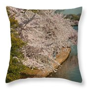 Cherry Blossoms 2013 - 053 Throw Pillow