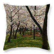 Cherry Blossoms 2013 - 057 Throw Pillow