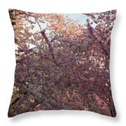 Cherry Blossoms 2013 - 065 Throw Pillow