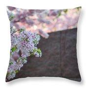Cherry Blossoms 2013 - 066 Throw Pillow