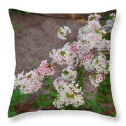 Cherry Blossoms 2013 - 067 Throw Pillow