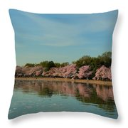 Cherry Blossoms 2013 - 088 Throw Pillow