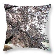 Cherry Blossoms 2013 - 092 Throw Pillow