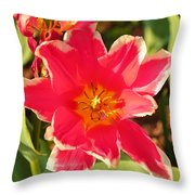 Cherry Blossoms 2013 - 093 Throw Pillow