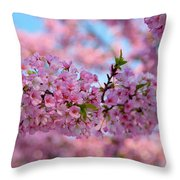 Cherry Blossoms 2013 - 095 Throw Pillow