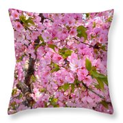 Cherry Blossoms 2013 - 097 Throw Pillow